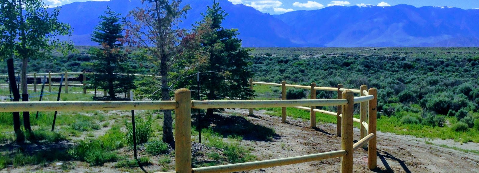 Wyoming Fence Company Near Me