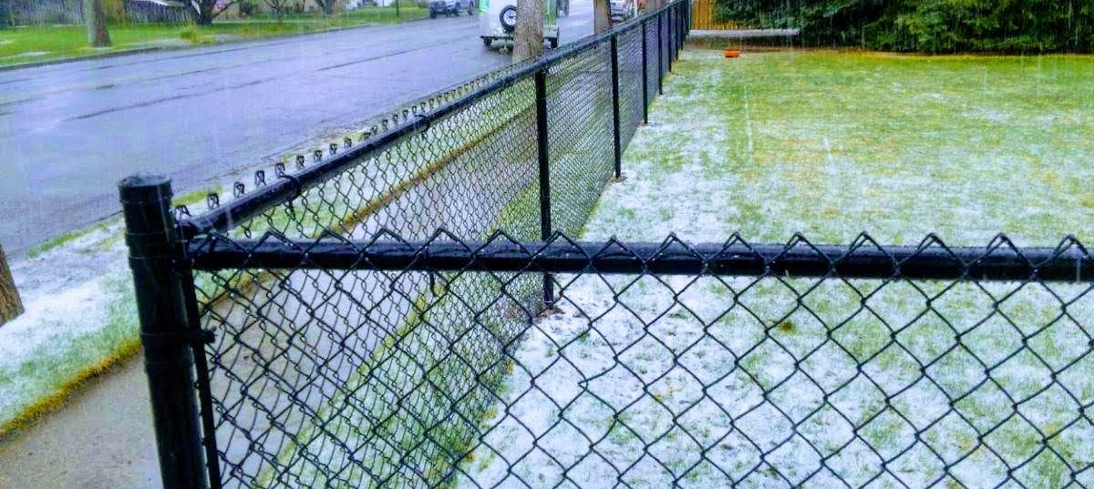 Chain Link Fences in Wyoming: The Basics